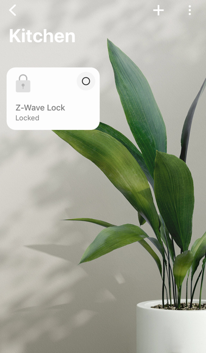 Z-Wave_Example_Lock_2.png